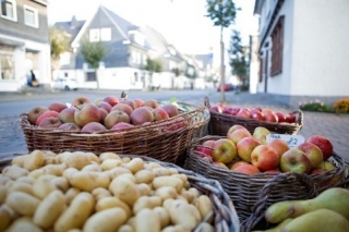 Regionale Produkte im Naturpark Sauerland Rothaargebirge